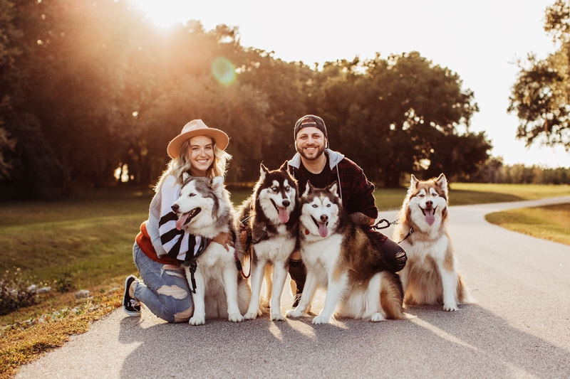 Family Photography, Couple with their three dogs